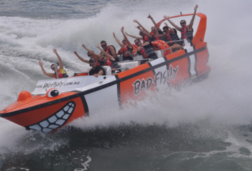 Take a spin in a jet boat in Cairns harbour