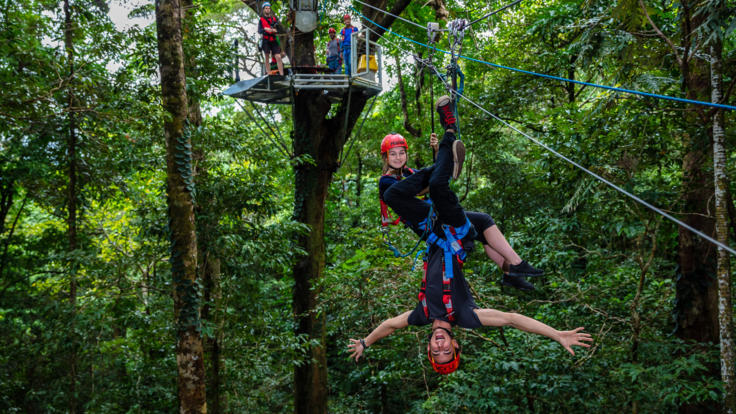 Zip lining tours are fun for everyone in the Daintree Rainforest in Queensland