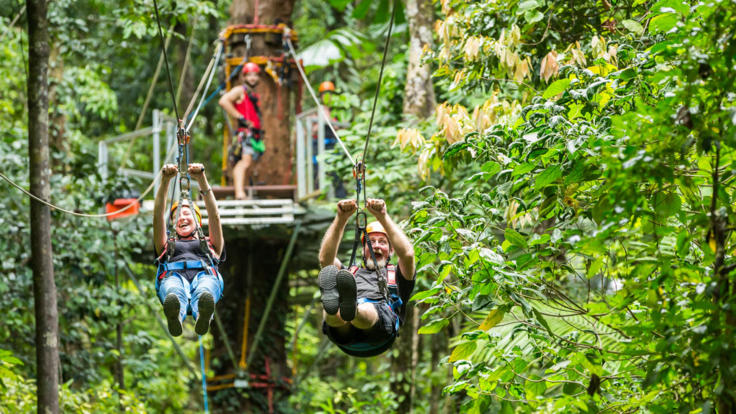 Daintree zip line tours - high wire antics in the tropics