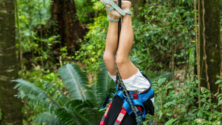 Get crazy in the Daintree rainforest