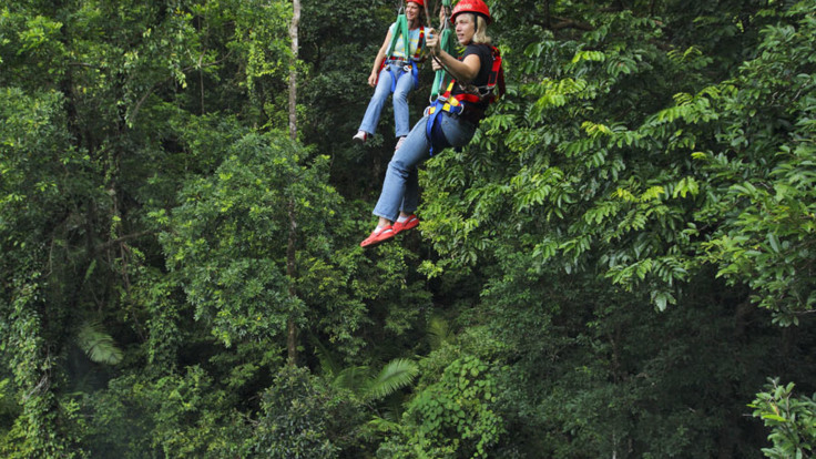 Zip Lining through the Daintree rainforest canopy
