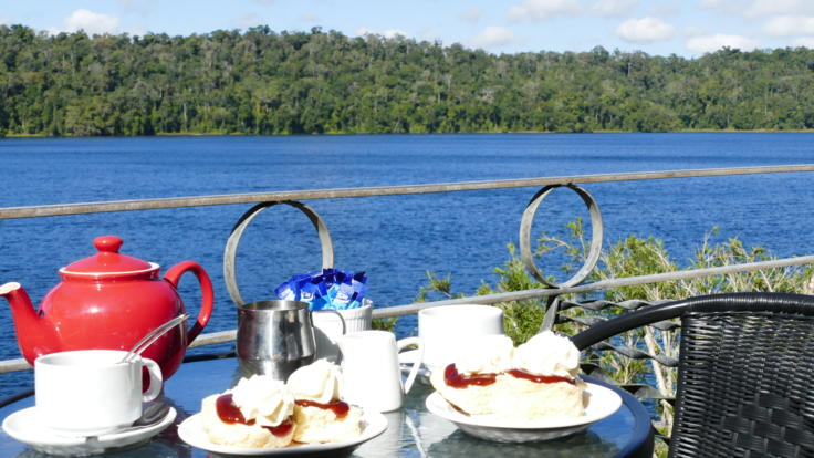 Tea/Coffee, scones with jam and cream at Lake Barrine Tea House