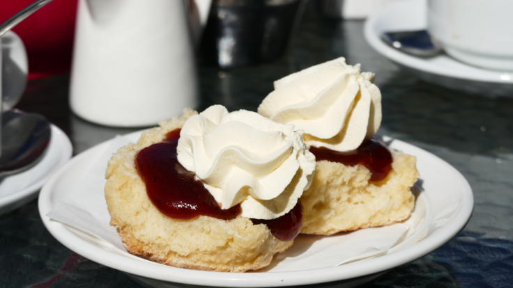 Scones with jam and cream | Morning Tea at The Lake Barrine Tea House