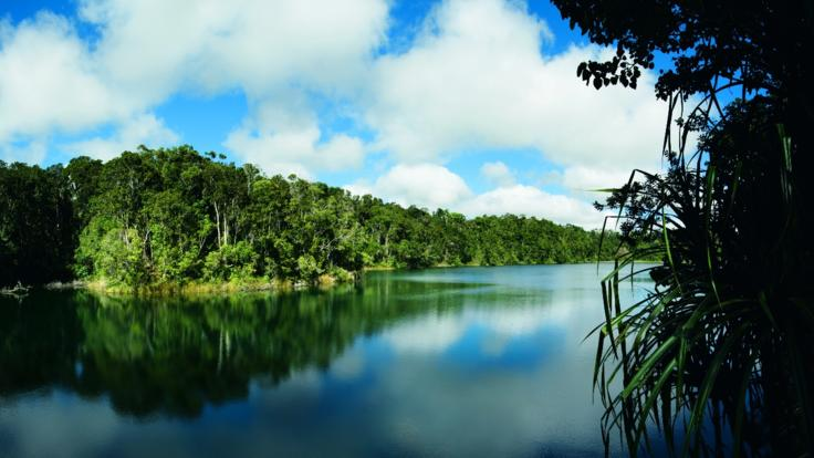 Lake Barrine walk are available on your 1 day private tour