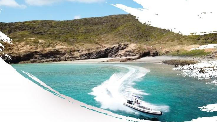 Explore secluded beaches on this half day Keppel Island cruise