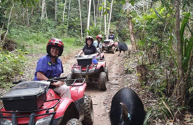 ATV Rainforest Tours Kuranda - Cairns | Cassowary