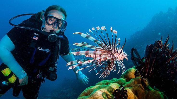 Don't touch the Lion Fish on the Great Barrier Reef