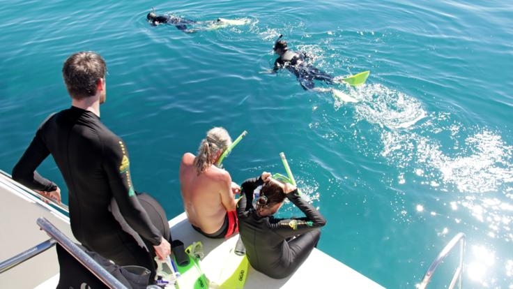 Snorkel off the aft duck board and slip into the water of the Great Barrier Reef