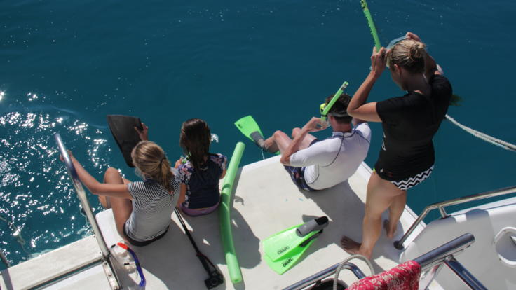 The perfect Mission Beach dive and snorkel tour for families to see the Great Barrier Reef