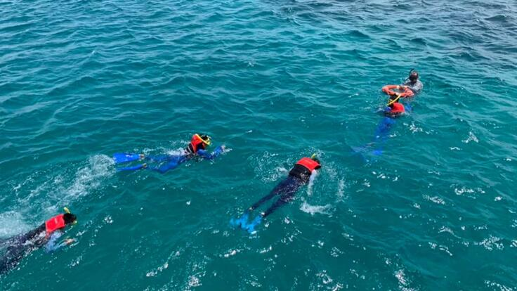 Cairns Boat Charters - Snorkel The Reef