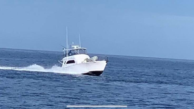 Fishing Charters Cairns - Boat Charters Cairns