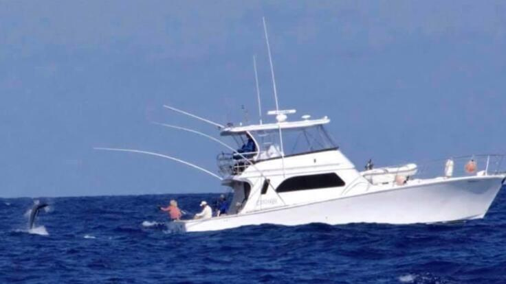 Marlin Fishing Cairns - Charter Boat Great Barrier Reef