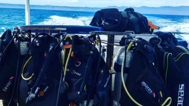 Private Charter Dive Tours from Port Douglas