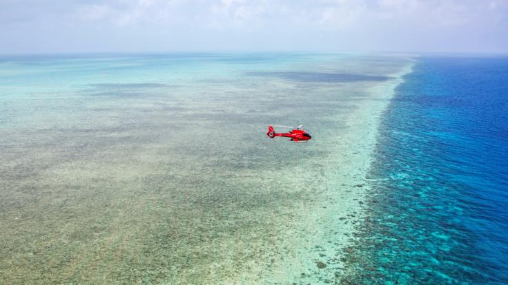Helicopter Reef Scenic flight on the Great Barrier Reef - Townsville Flights Available