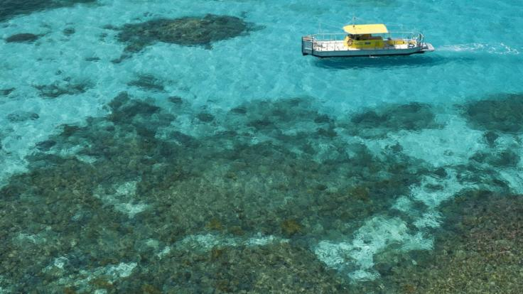 Semi- submarine and glass bottom boat tours just off Green Island