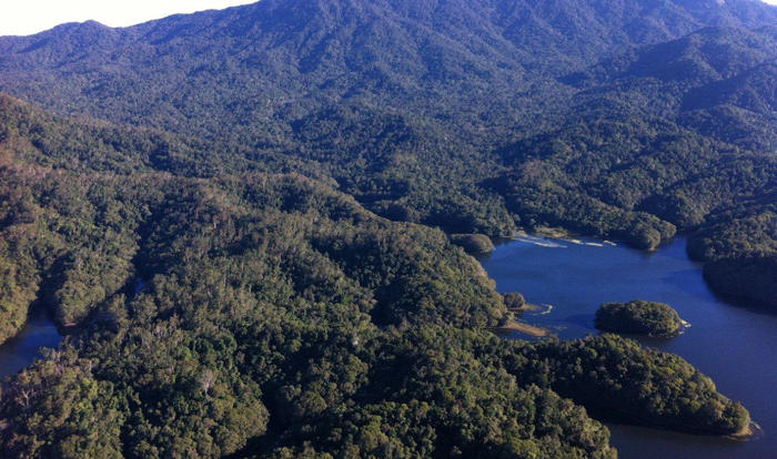 Fly over Reef & Rainforest on Scenic Helicopter Flight