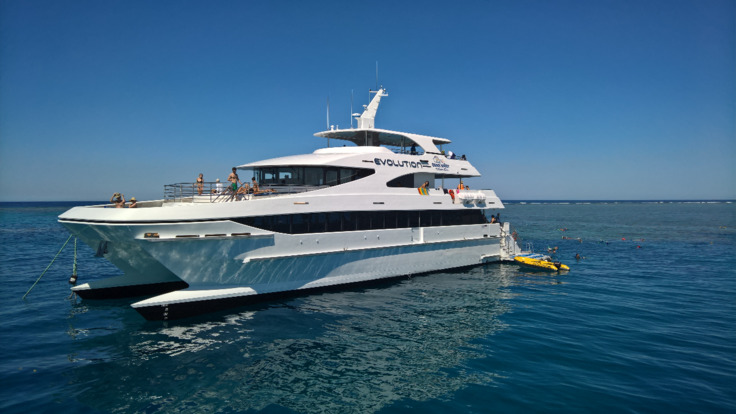 Snorkel off brand new vessel MV-EVO from Cairns on the Great Barrier Reef