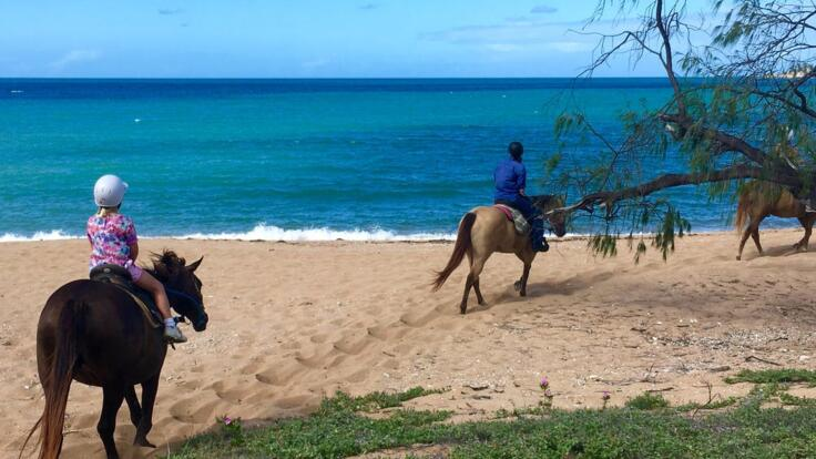 Townsville Helicopters - Horse Riding on the Beach Magnetic Island