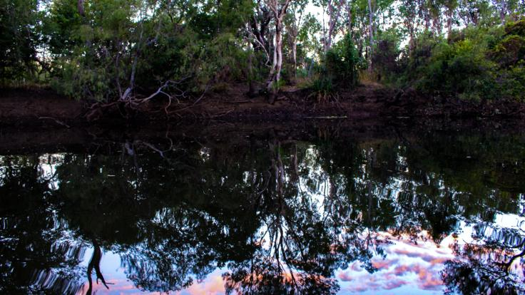 Cape York 4WD Safari Tours - Camping By a Billabong in Queensland