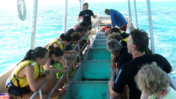 Glass bottom boat tour, Upolu Reef Great Barrier Reef Australia