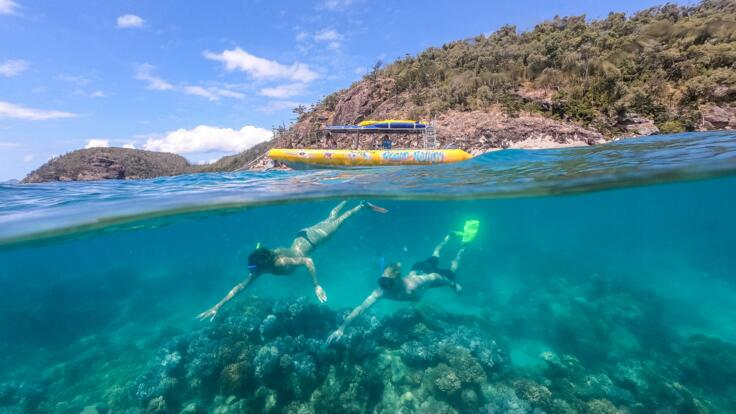 Whitsundays Best Snorkeling Spots