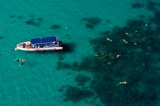 Snorkel Tour Cape Tribulation - Aerial View Fast Rib Boat Ride