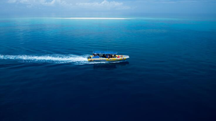 Small Group Private Charter Snorkel Tour