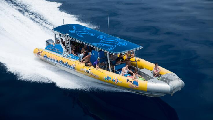 Snorkel Tour to the Great Barrier Reef from Cape Tribulation