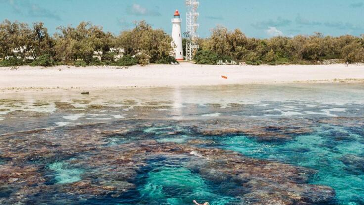 Lady Elliot Island Tours - Snorkel the lagoon near the lighthouse