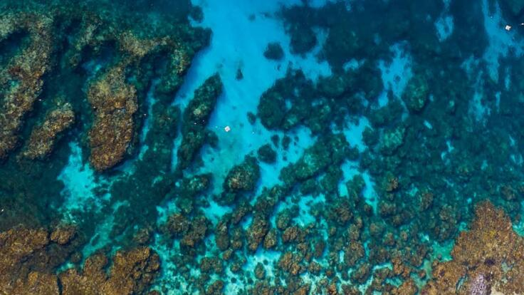 Lady Elliot Island Tours - Aerial view of Lady Elliot Island - Great Barrier Reef