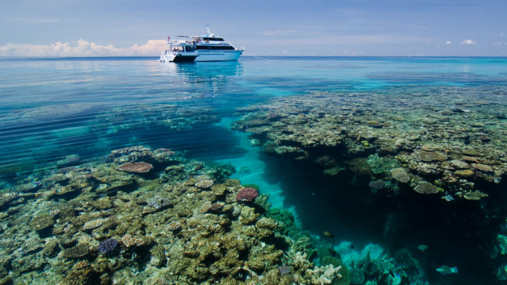 Reef locations and coral bommies on the Outer Great Barrier Reef