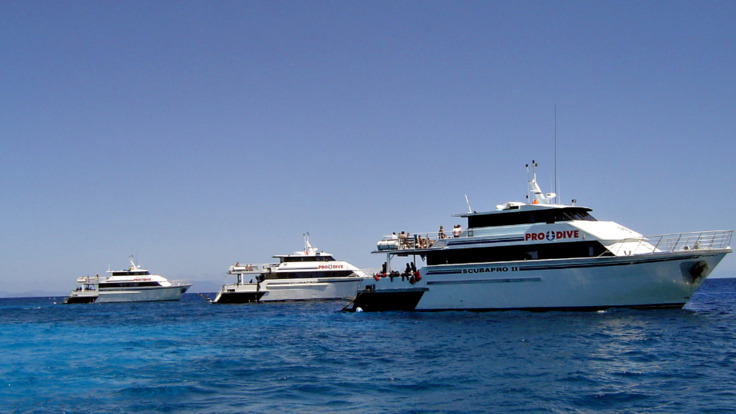 Our Cairns dive boat fleet on the Great Barrier Reef in Australia