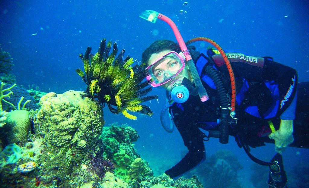 Up to 2 night dives on our liveaboard dive trip on the Great Barrier Reef