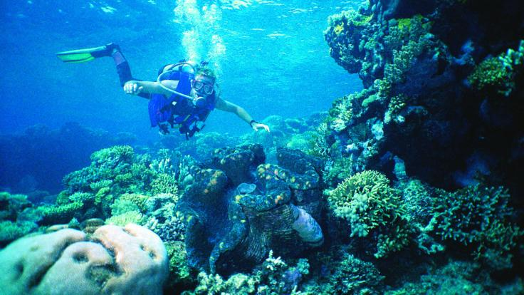 Advanced scuba diving on the Great Barrier Reef