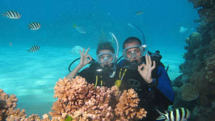 Upgrade to include scuba diving on your 7 Day, 3 Tour Ultimate Reef Pass.
