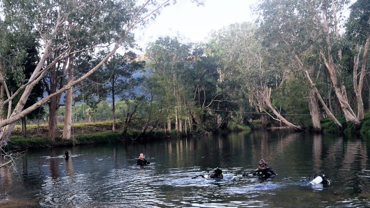 Rainforest platypus dive site in Finch Hatton gorge
