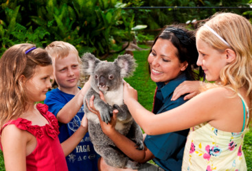 Cuddle a koala at Kuranda Rainforestation Nature Park