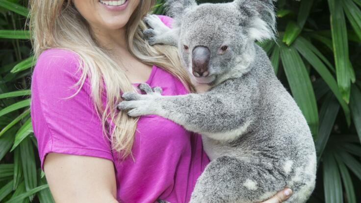 Kuranda Tours - Have a photo taken cuddling a Koala