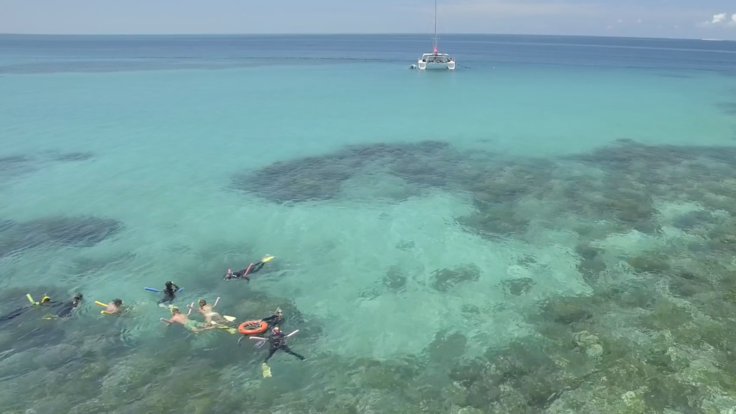 Barrier Reef Australia: Guests snorkelling Upolu Reef off Cairns