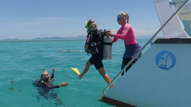Barrier Reef Australia: Taking a leap into the Great Barrier Reef with scuba gear