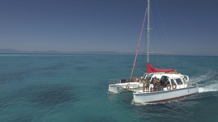 Barrier Reef Tour: Cairns dive and snorkel tour on a catamaran