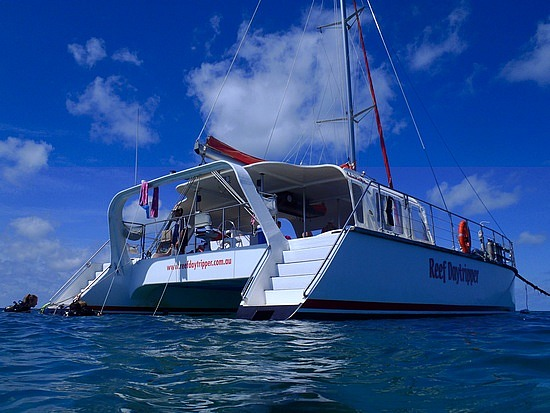Small group tour on a Catamaran from Cairns
