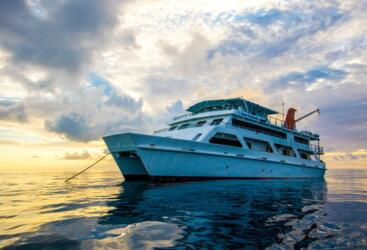 Cairns Dive Boats - Liveaboard Dive Trips From Cairns