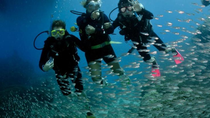 Introductory scuba divers enjoying the Great Barrier Reef