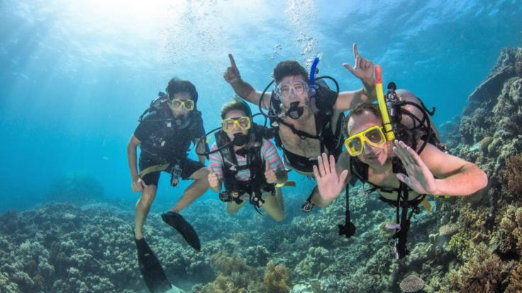 Introductory scuba divers are welcome on our liveaboard dive trips in Cairns
