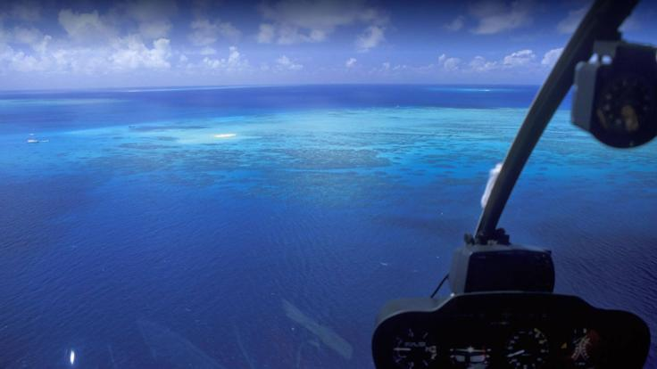 Join the boat on a helicopter flight transfer to the outer Barrier Reef in Cairns