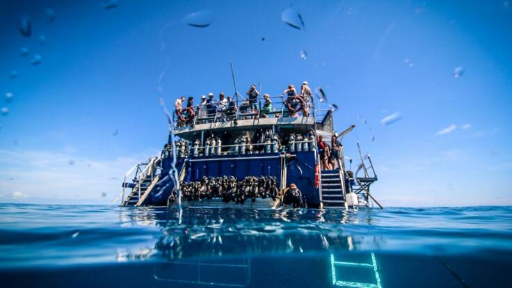 Reef Trips from Cairns - Dive & Snorkel Tour