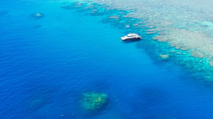 Aerial view of our tour boat moored at a reef site off Cairns on the Great Barrier Reef in Australia