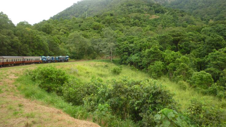 Climbing to Kuranda up the mountain on the train