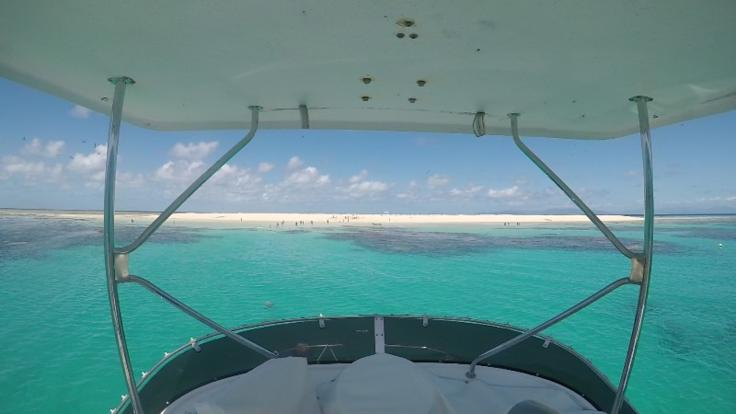Great Barrier Reef Sand Cay | Private Charter Boat